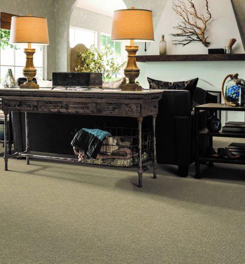 Livingroom Carpet in La Jolla, San Diego CA